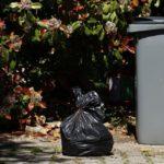 Corriger les comportements inciviques par rapport aux déchets d'après-fêtes